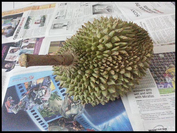 Image Credit: blog.saimatkong.com