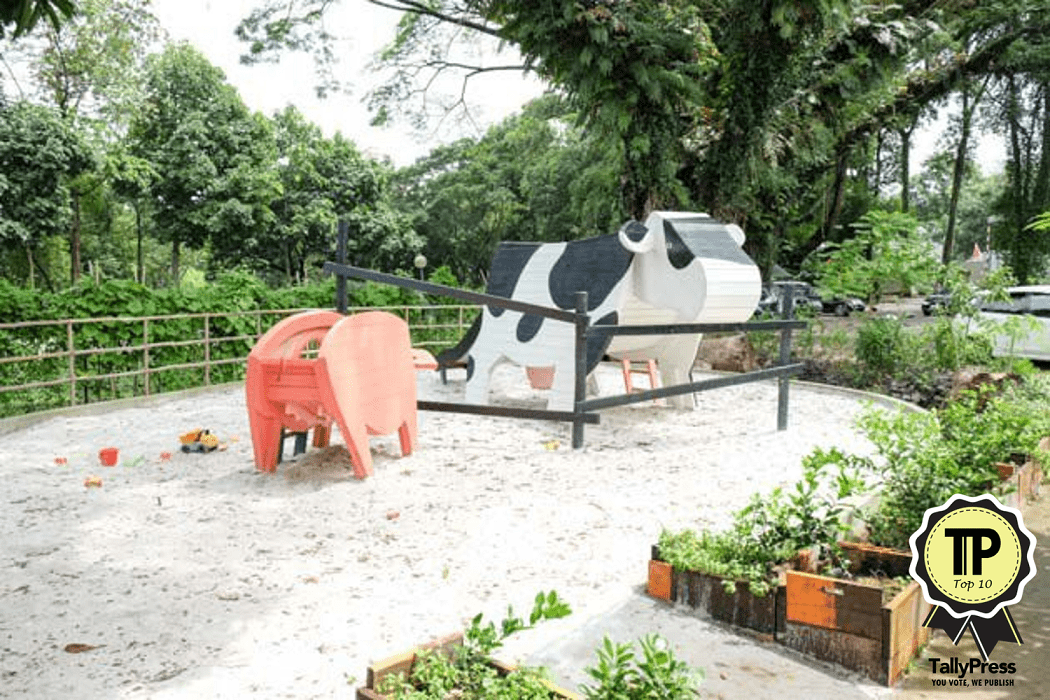Top 10 Child-Friendly Cafés in Singapore Open Farm Community