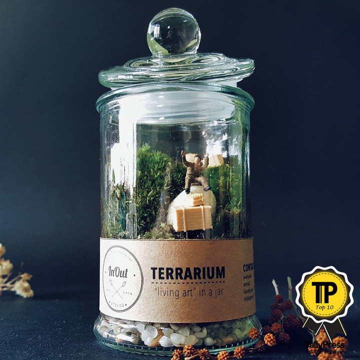 singapores-top-10-terrarium-makers-inout