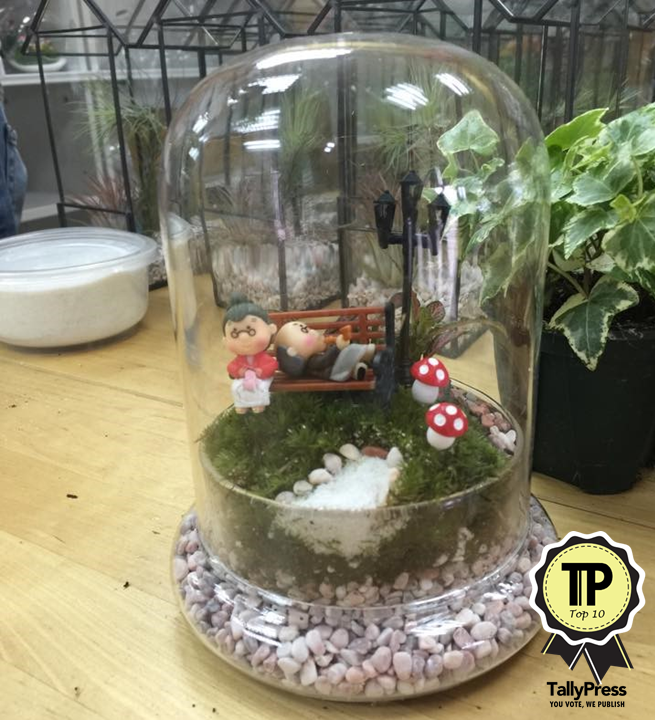 singapores-top-10-terrarium-makers-love-in-a-bottle