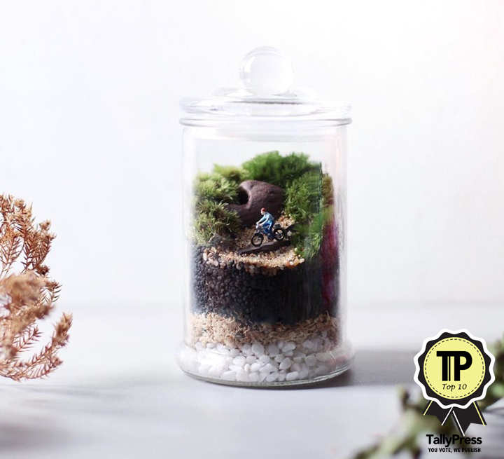 singapores-top-10-terrarium-makers-mossingarden
