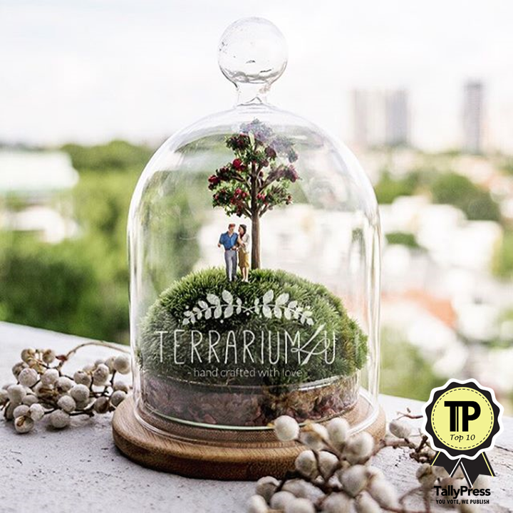 singapores-top-10-terrarium-makers-terrarium4u