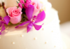 Malaysia's Top 10 Cake Specialists
