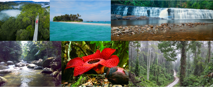 6 Must Visit Conservation Areas in Sabah for Nature Explorers