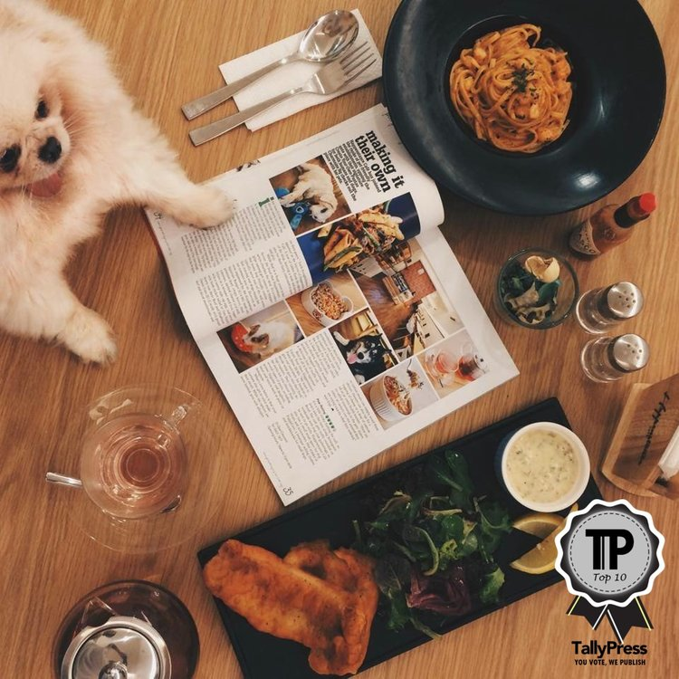 2-singapores-top-10-pet-friendly-cafes-happenstance-cafe
