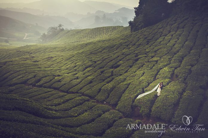 8 Beautiful Nature Places for Pre-Wedding Shoot in Malaysia