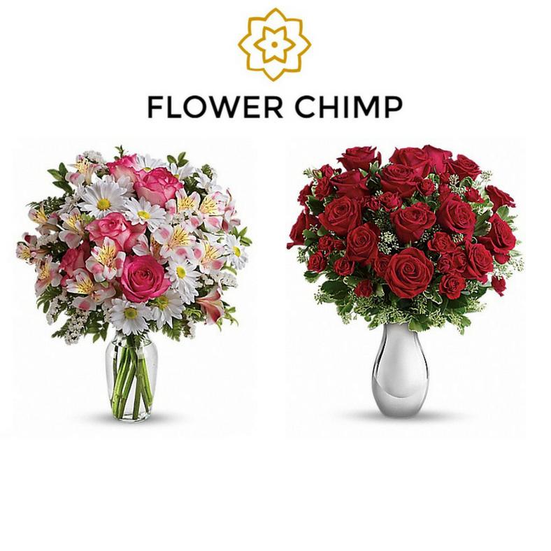 Flower Chimp Malaysia