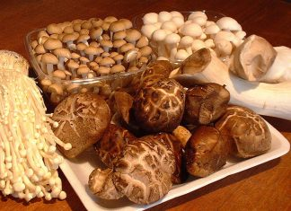 5 different types of mushrooms in asia and their health benefits