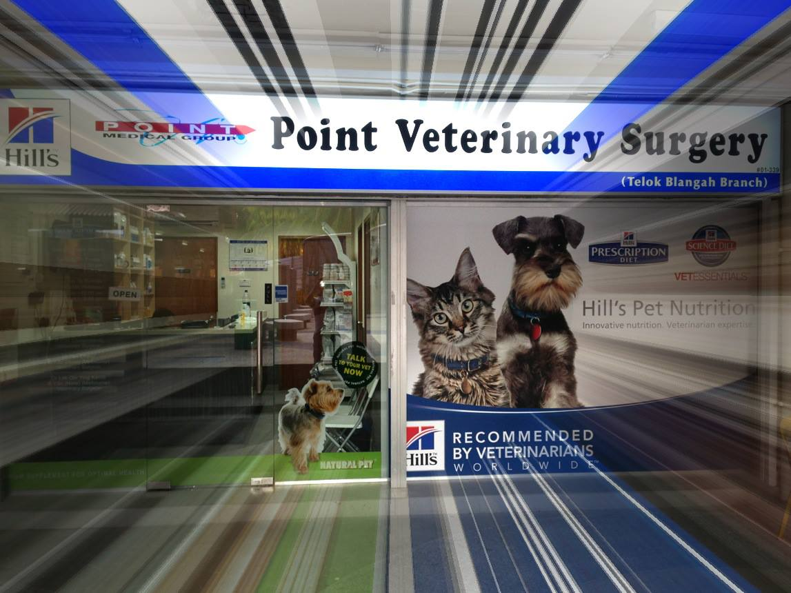 Point Veterinary Surgery | TallyPress
