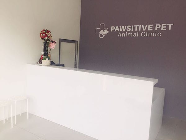 Pawsitive Pet Animal Clinic