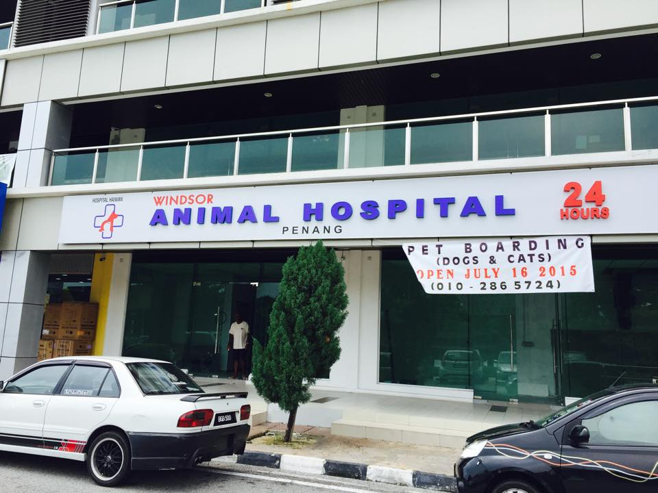 Windsor Animal Hospital Penang