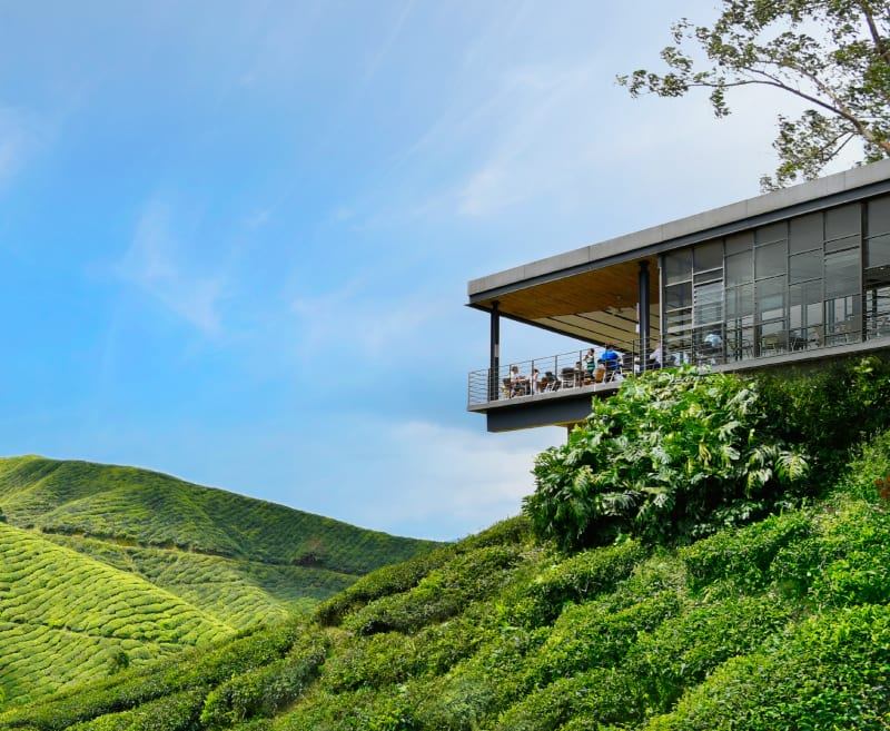 The view of the cafe overlooking the rolling hills of tea plantation at Boh Sungei Palas Tea Centre