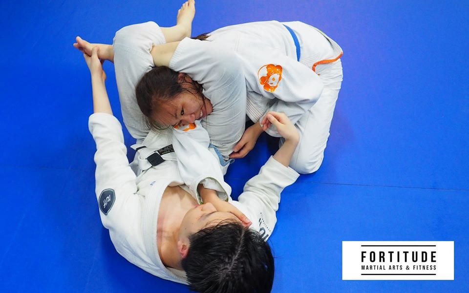 Fortitude Martial Arts & Fitness