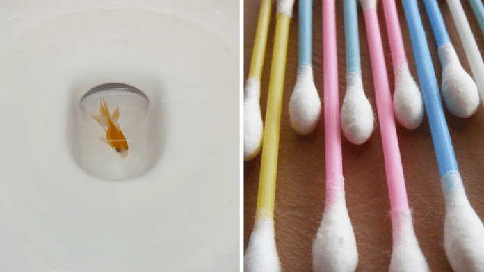 15 Things You Shouldn't Flush Down The Toilet